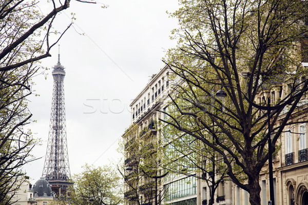 french paris street with Eiffel Tower in perspective trought trees, post card view Stock photo © iordani