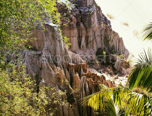 green landscape with palms and white sand rocks, fairy stream vi Stock photo © iordani
