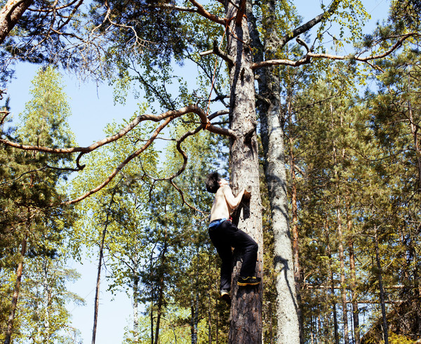 young brunette man climbing on tree with rope, lifestyle people  Stock photo © iordani