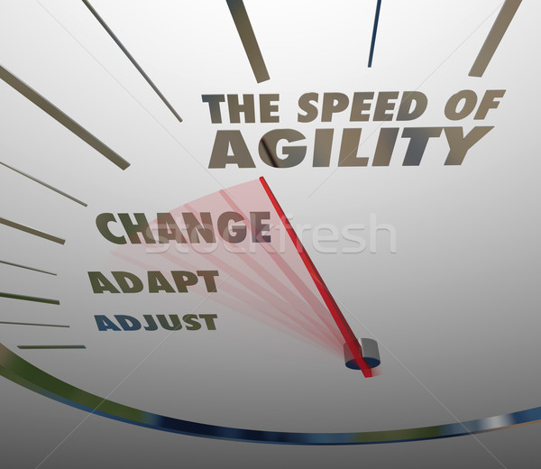 Speed of Agility Speedometer Quick Change Adaptation Stock photo © iqoncept