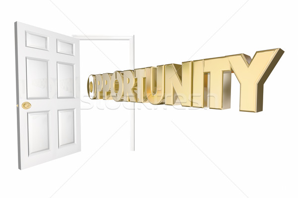 Opportunità porta apertura parola 3D animazione Foto d'archivio © iqoncept