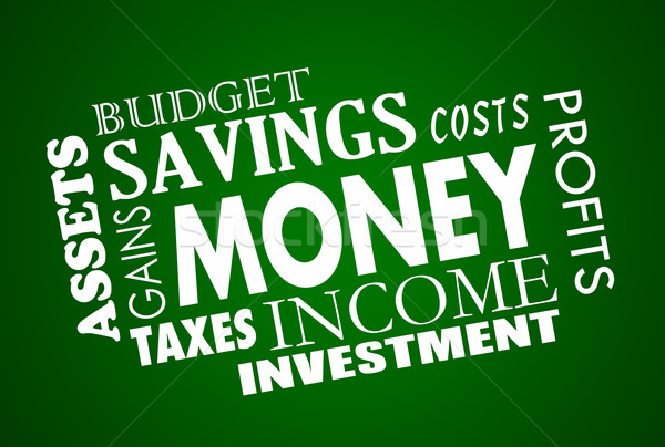 Money Savings Budget Finances Gains Assets Word Collage Stock photo © iqoncept