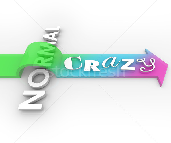Crazy Vs Normal Arrow Over Word Silly Unusual Funny Impossible I Stock photo © iqoncept