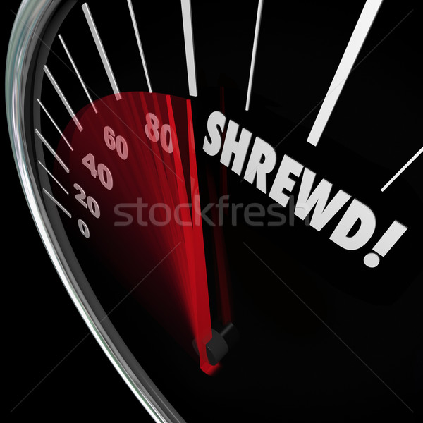 Shrewd Speedometer Business Savvy Knowledge Experience Cunning Stock photo © iqoncept