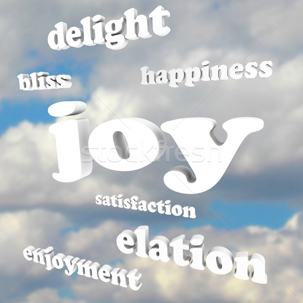 Joy Words in Cloudy Sky Satisfaction Happiness Stock photo © iqoncept