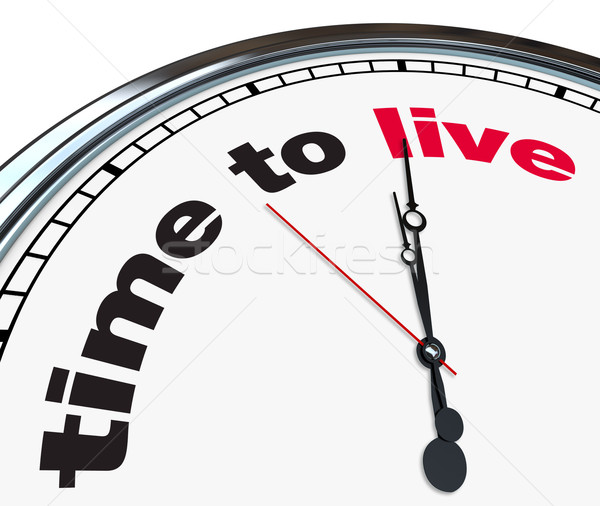 Time to Live - Ornate Clock Stock photo © iqoncept