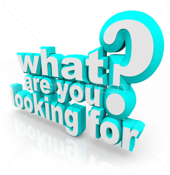 What Are You Looking For Question Mission Quest Goal Search Stock photo © iqoncept
