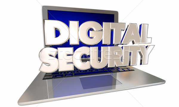 Digital Security Safeguard Private Personal Information Online L Stock photo © iqoncept