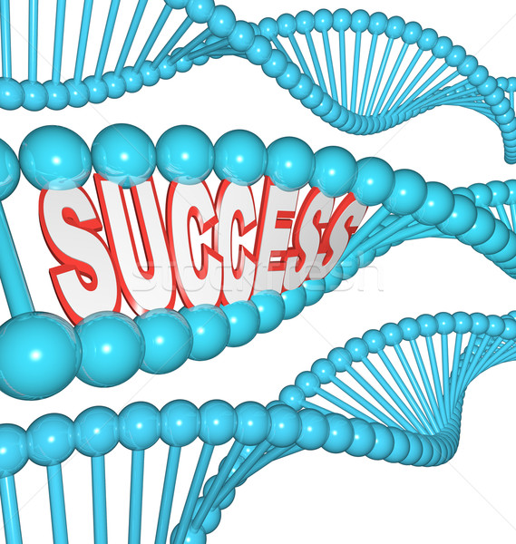 Success Word in DNA Strands Shows that Successful People are Bor Stock photo © iqoncept