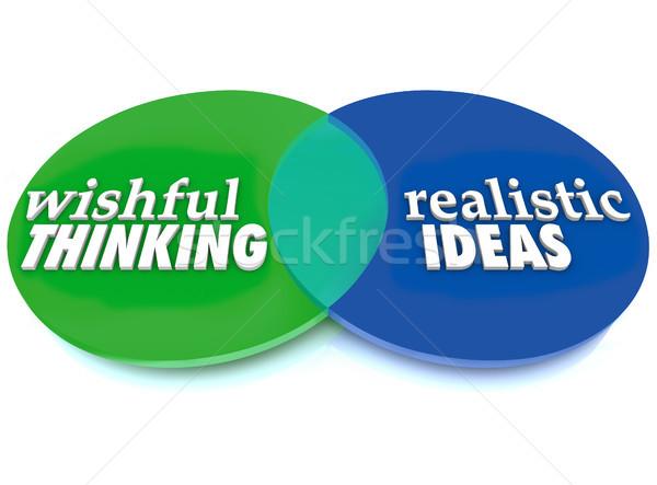 Wishful Thinking Realistic Ideas Venn Diagram Stock photo © iqoncept