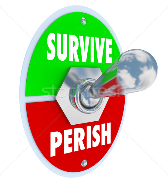 Survive Vs Perish Toggle Switch Choose to Win Endure Attitude Stock photo © iqoncept
