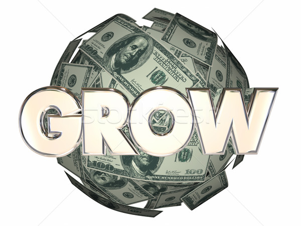Grow Money Cash Ball Nest Egg More Increase Income Stock photo © iqoncept
