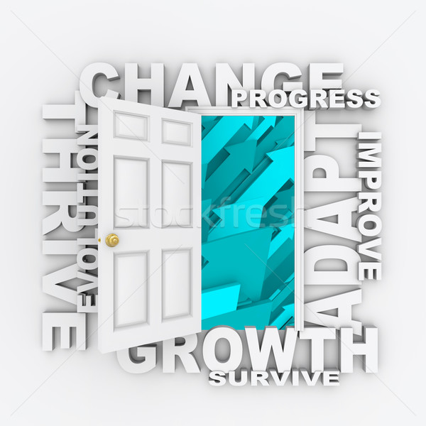 Change - Open Door to Success Stock photo © iqoncept