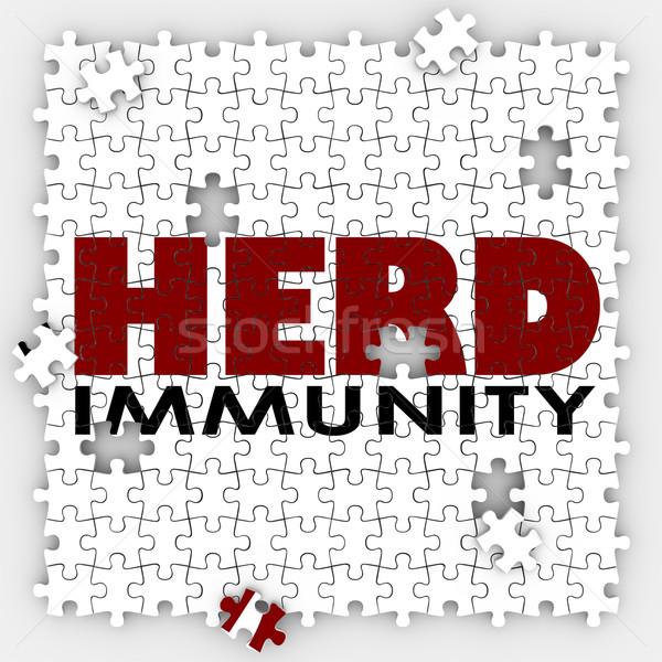 Nyáj vakcina puzzle védelmez közösség társadalom Stock fotó © iqoncept