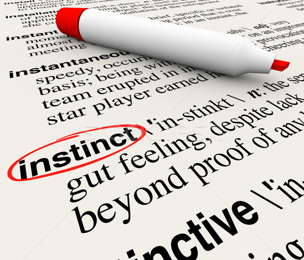 Instinct Dictionary Definition Word Circled Meaning Stock photo © iqoncept