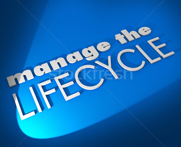 Manage the Lifecycle 3d Words Develop Sales Process Procedure Stock photo © iqoncept