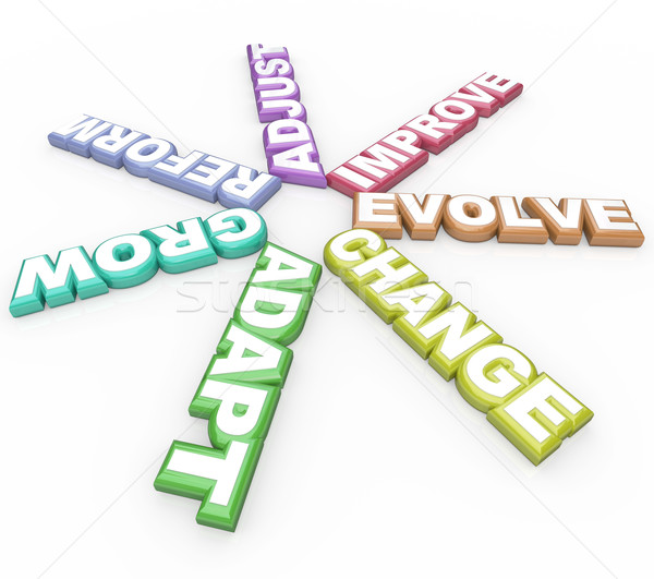 Change Adapt Evolve 3D Words on White Background Stock photo © iqoncept