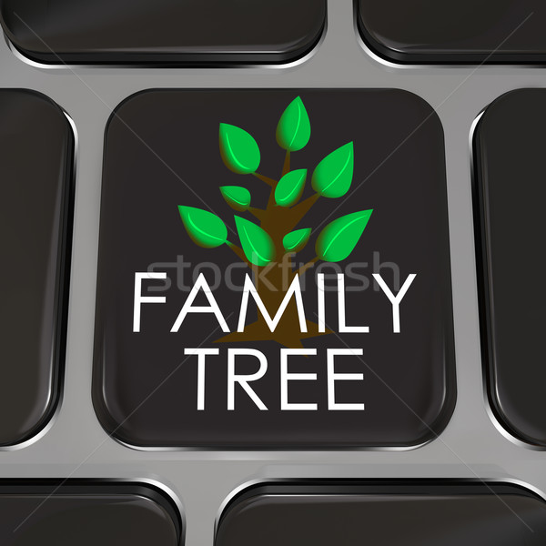 Family Tree Computer Laptop Keyboard Key Button Research History Stock photo © iqoncept