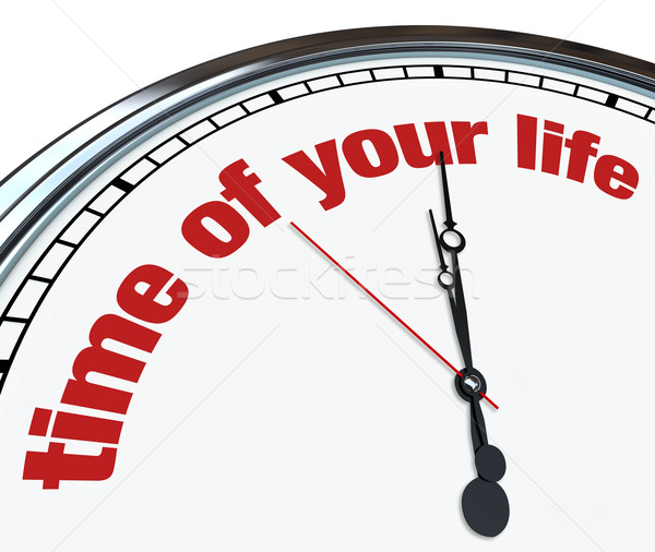 Time of Your Life - Ornate Clock Stock photo © iqoncept