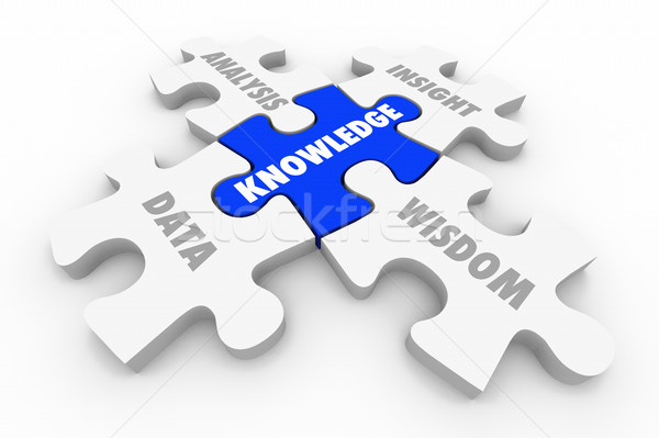 Knowledge Puzzle Pieces Data Analysis Insight Wisdom 3d Illustra Stock photo © iqoncept