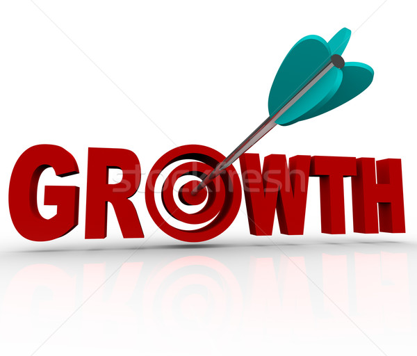 Growth - Arrow in Target Reaching Goal of Increase Stock photo © iqoncept
