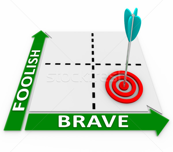 Brave Vs Foolish Words Matrix Courageous or Risky Choice Stock photo © iqoncept