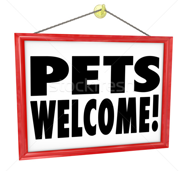 Stock photo: Pets Welcome Allowed Permitted Store Business Building Sign