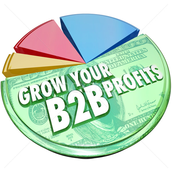 Grow Your B2B Profits Pie Chart Increase Business Sales Stock photo © iqoncept