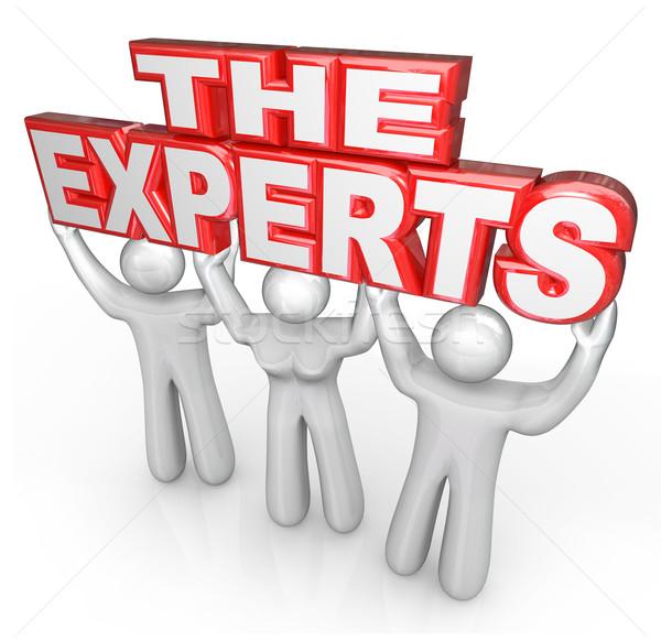 Especialistas profissional pessoas ajudar resolver problema Foto stock © iqoncept