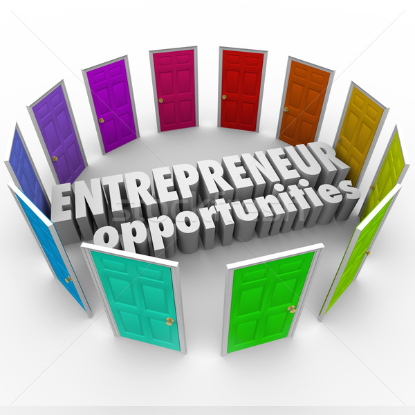 Entrepreneur Opportunities Many Business Paths Directions Choice Stock photo © iqoncept