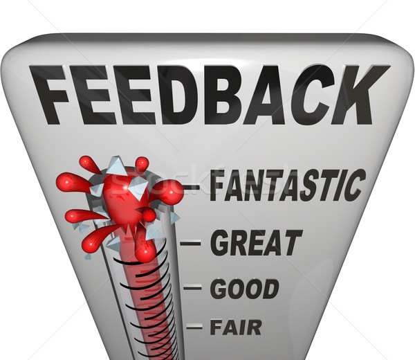 Feedback Level Measuring Thermometer Opinions Reviews Stock photo © iqoncept