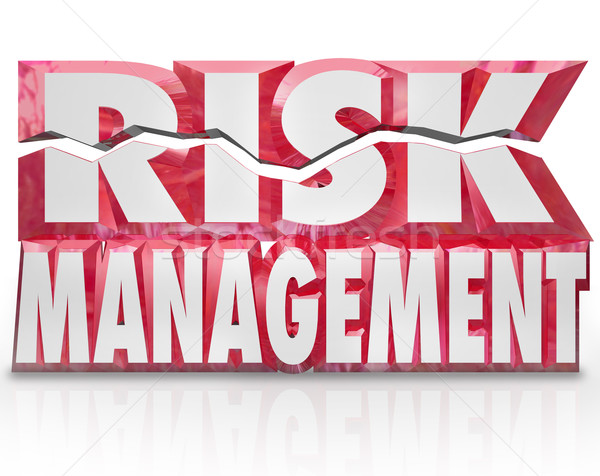 Risk Management 3d Words Reducing Danger Minimize Liability Stock photo © iqoncept