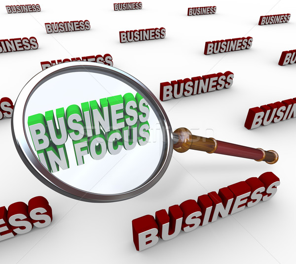 Business in Focus Words Magnifying Glass Stock photo © iqoncept