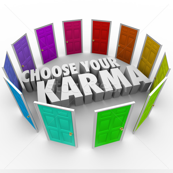 Stock photo: Choose Your Karma Many Doors Paths Fate Destiny Luck