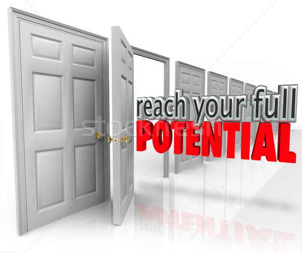 Reach Your Full Potential 3d Words Open Door Opportunity Stock photo © iqoncept