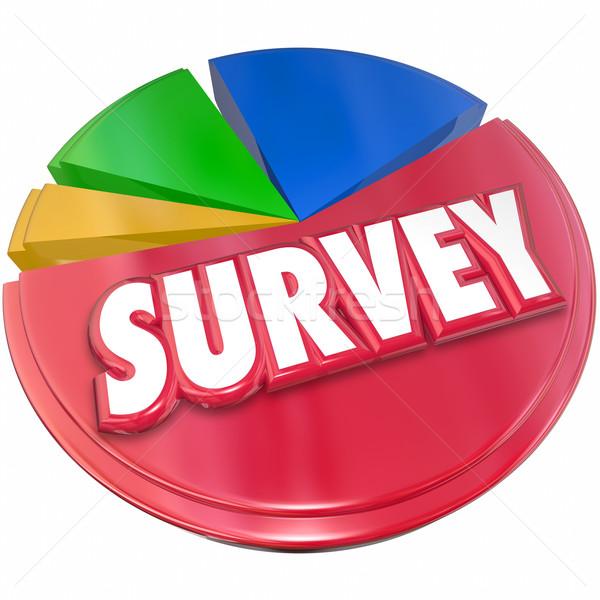 Overzicht resultaten antwoorden cirkeldiagram markt onderzoek Stockfoto © iqoncept