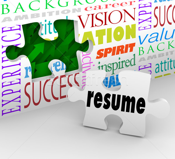 Resume Fill Opening New Position Job Interview Experience Stock photo © iqoncept