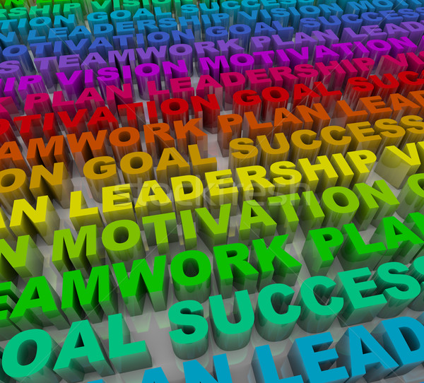 Principles of Success - Colorful Words Stock photo © iqoncept