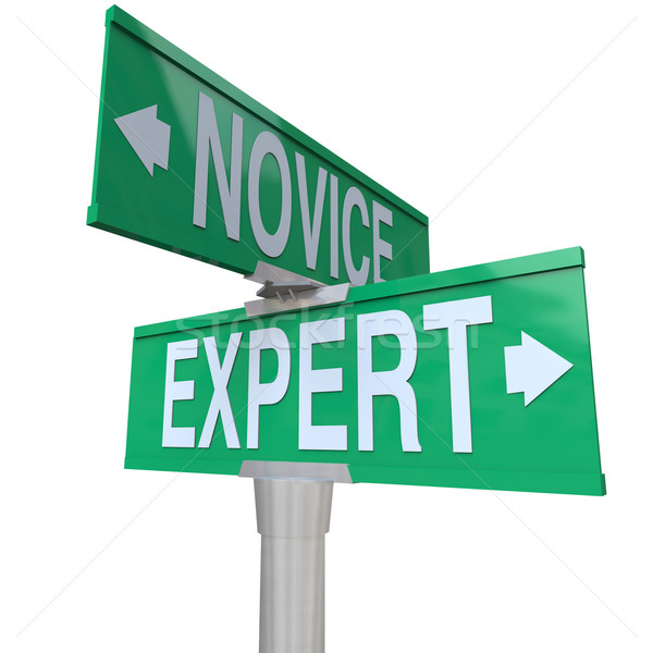 Expert Vs Novice Two Way Road Sign Skills Experience Expertise Stock photo © iqoncept