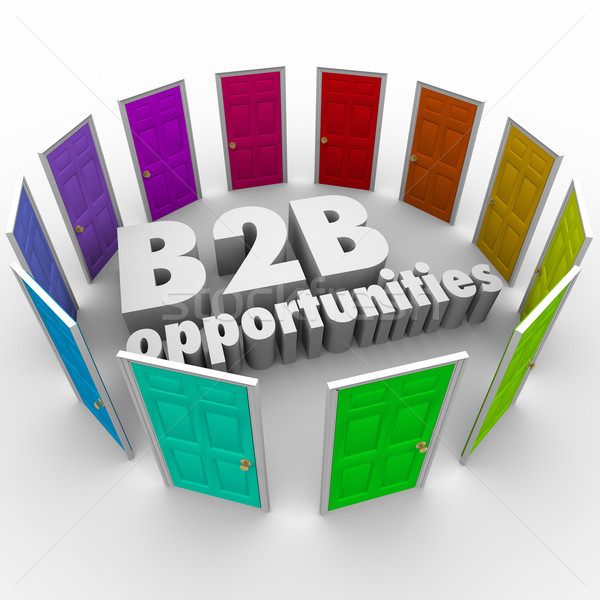 B2B Opportunities Word Doors New Business Paths Careers Jobs Stock photo © iqoncept