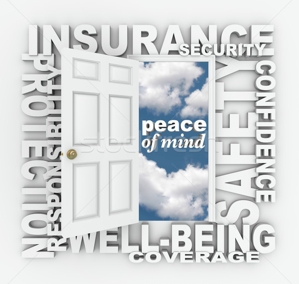 Insurance Word Door 3D Collage Protection Security Stock photo © iqoncept