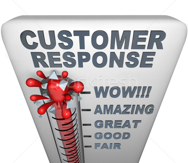 Thermometer - Customer Response Stock photo © iqoncept