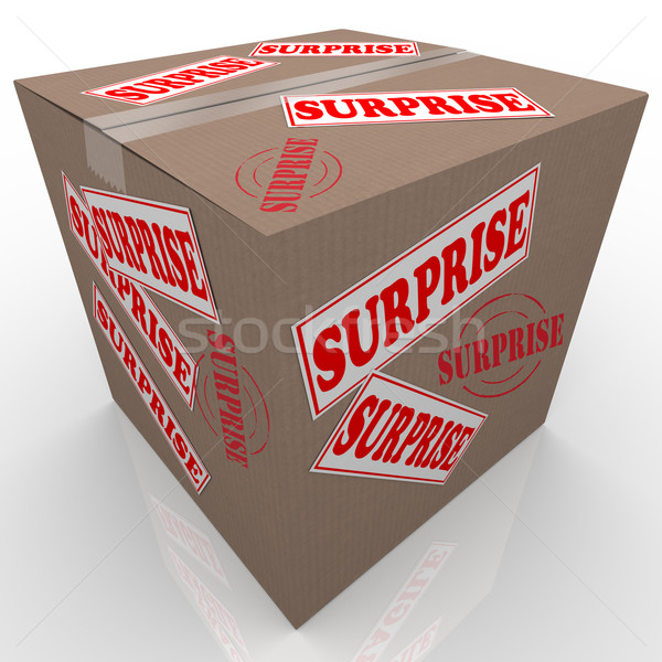 Surprise Box Shipped Cardboard Package Stock photo © iqoncept