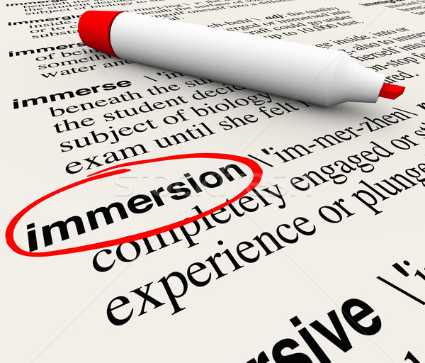 Immersion Word Dictionary Definition Circled Experience Stock photo © iqoncept