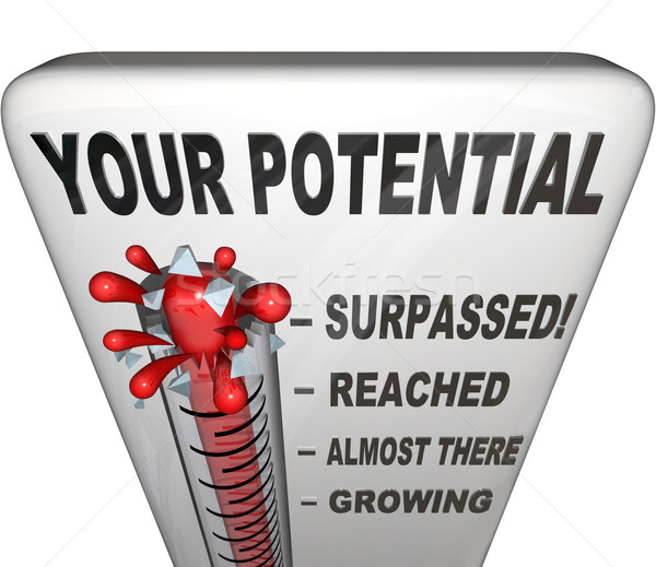 Your Potential Measured Will You Reach Your Full Success Stock photo © iqoncept