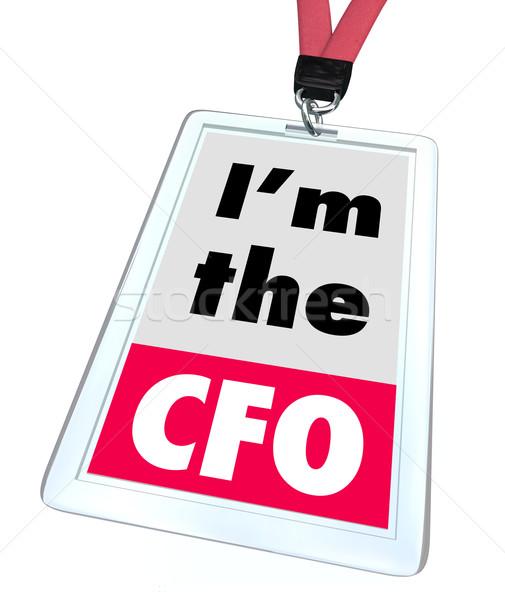 Capo finanziaria ufficiale badge lavoro ruolo Foto d'archivio © iqoncept
