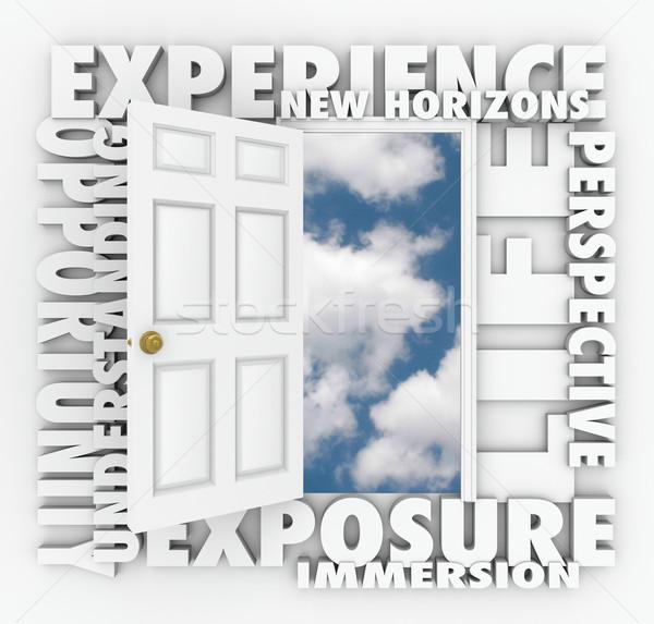 経験 新しい ドア 青空 ストックフォト © iqoncept