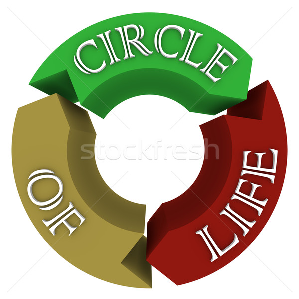 Circle of Life Arrows in Circular Cycle Showing Connections Stock photo © iqoncept