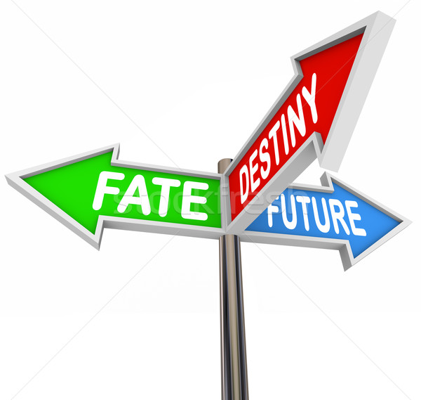 Stock photo: Fate Destiny Future Arrow SIgns Pointing Directions