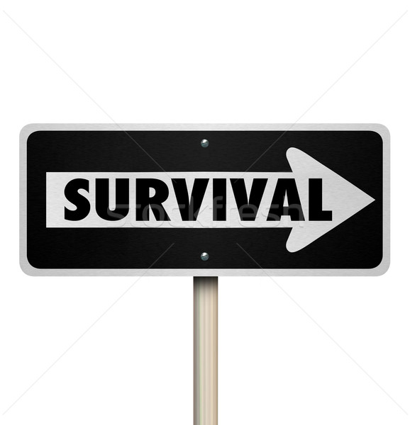 Survival Word One Way Road Sign Endurance Resilience Stock photo © iqoncept